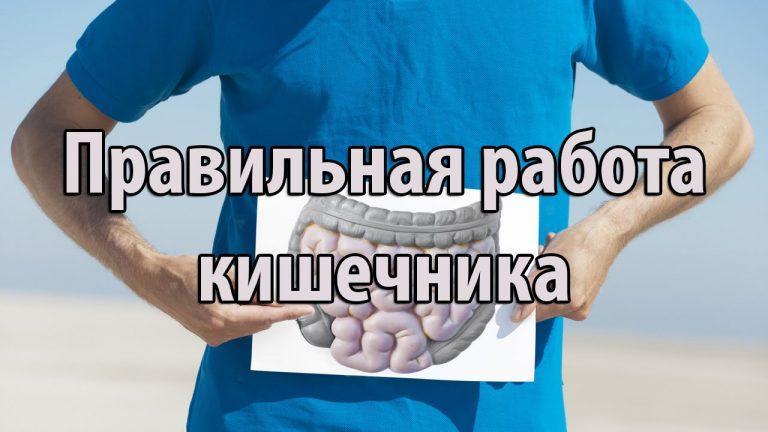 продукты для моторики кишечника пользоваться Вордстатом Компания