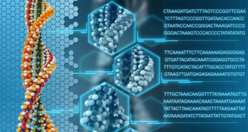 Spiral-DNK2