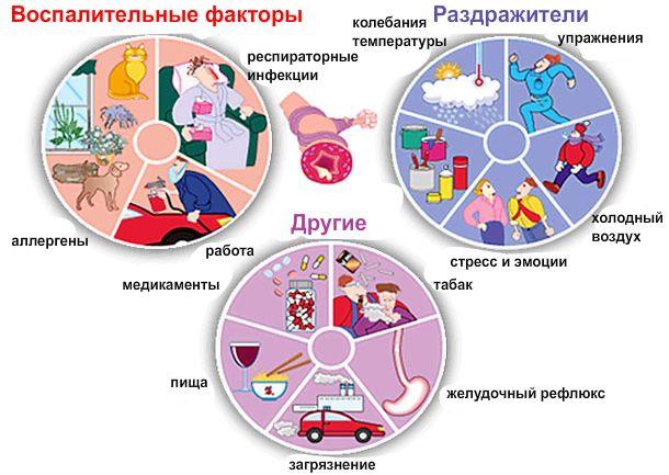 astma-bronhialnaja-atopicheskaja-2