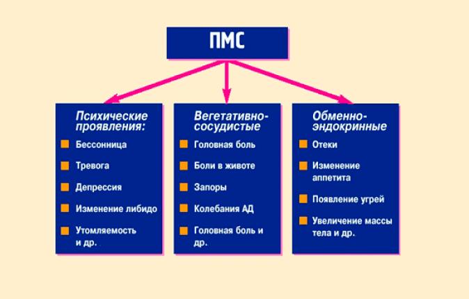 estet-pmc-min